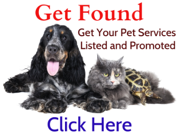 Pet Singapore, Pet Care, Pet Service, Pet Supplies, Pet Food, Pet Shop