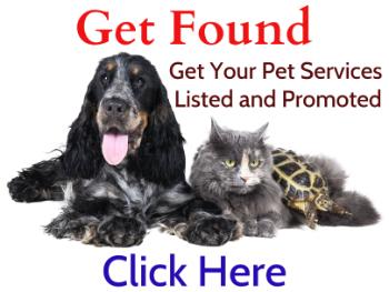 Pet Singapore, Pet Care, Pet Service, Pet Supplies, Pet Food, Pet Shop